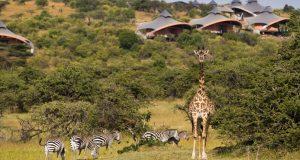 journey through Kenya and Tanzania