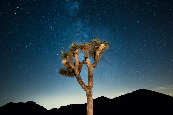 Stargaze Under A Dark Sky In The California Deserts