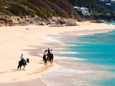 Horseback riding Beaches