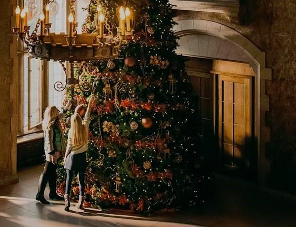 fairmont hotel christmas dinner