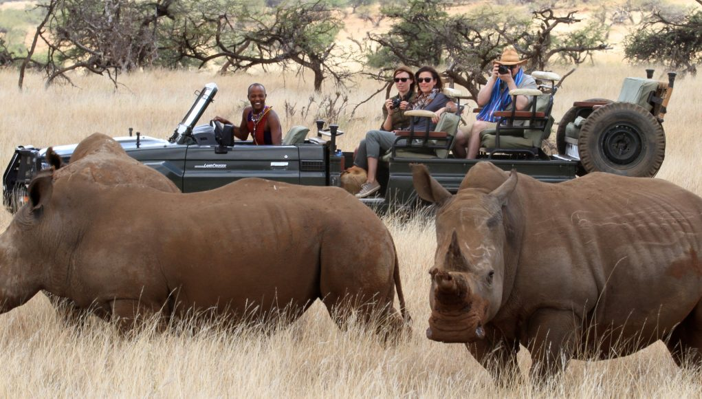Lewa-Wilderness-Rhinos