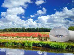 The Tulip Pod at Keukenhof