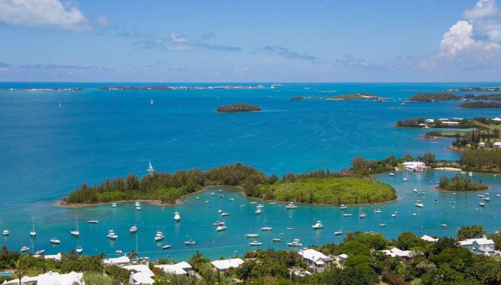 Live in Bermuda