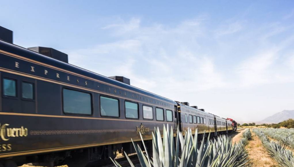 All-You-Can-Drink Tequila Train