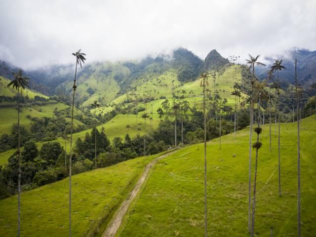 visit columbia in 2021