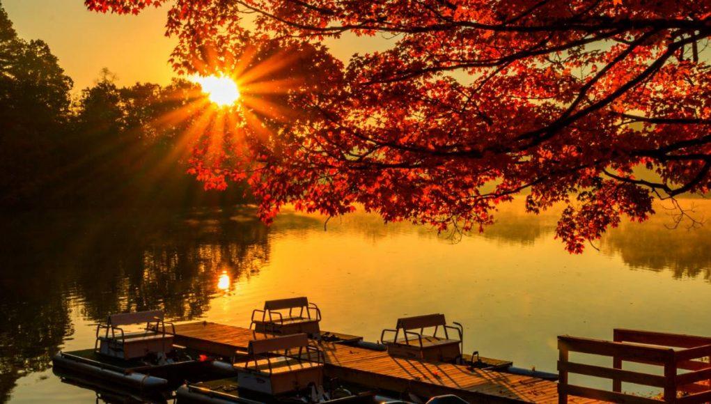 A sunset over Lake Lindsey at David Crockett State Park
