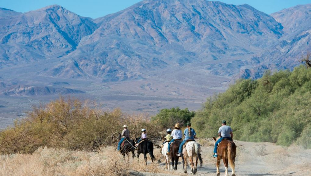 riding horses in death valley usa
