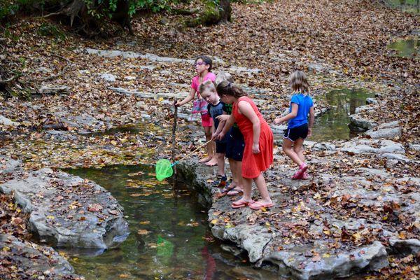 kids playing near a stream