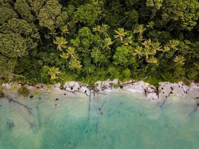 over head shot of tropical beach